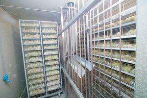 zundel-eclosoirs-incubateurs-04